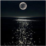 Sincronize-se Com O Período Fértil Dos Ciclos Lunares