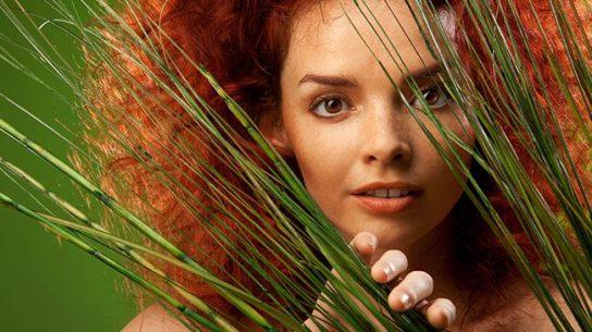 Surpreenda-se Com Os Feitos Do Extrato De Bamboo Felps